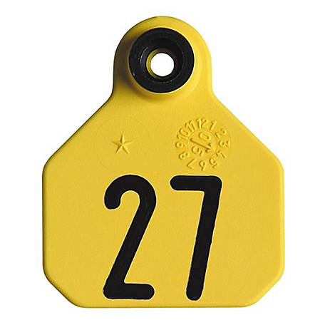 Y-Tex All American 1-Star Tags, Yellow, Numbered 26-50, Pack of 25