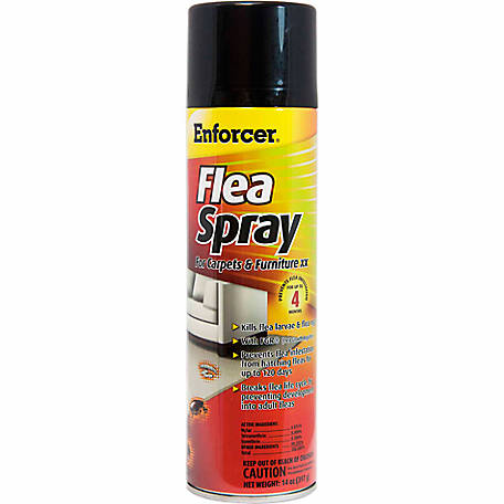 Enforcer Flea Spray For Carpets & Furniture, 14 oz.