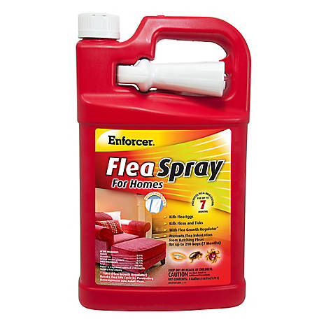 Enforcer Flea Spray for Homes, 1 gal., EFSH128