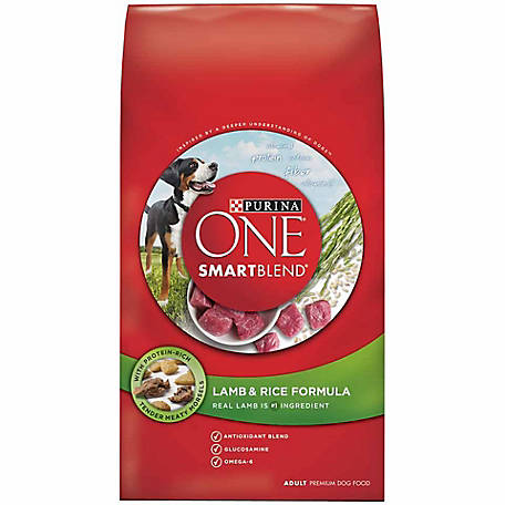 Purina ONE SmartBlend Lamb & Rice Formula Adult Premium Dog Food, 31.1 lb. Bag