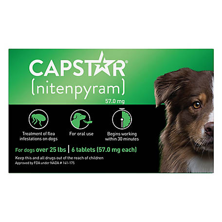 Capstar Nitenpyram Tablets For Dogs 25 Lb And Up Pack Of 6 At