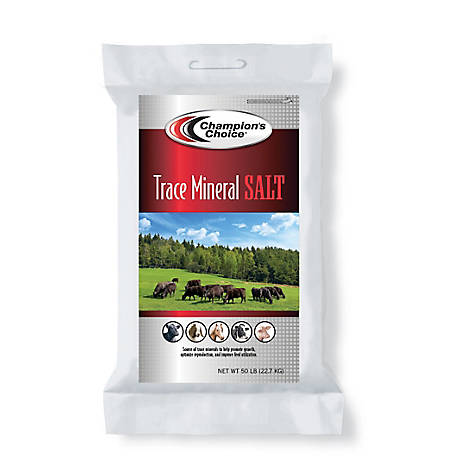 Champion's Choice Trace Mineral Salt, 50 lb.
