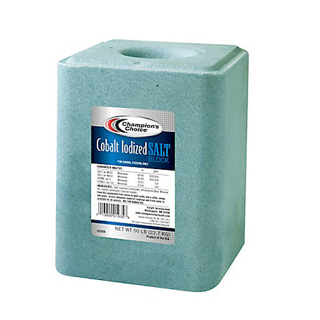 Champion's Choice Cobalt Iodized Salt Block, 50 lb.