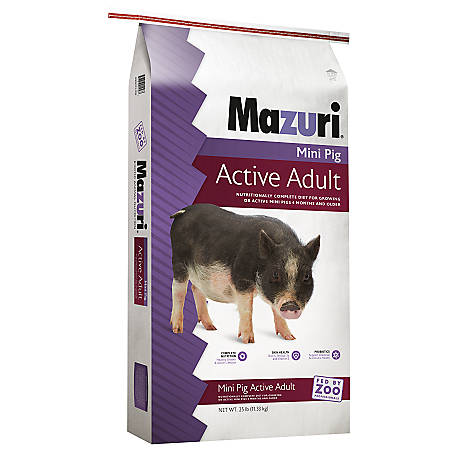 Mazuri Mini Pig Active Adult, 25 lb., 3005272-203