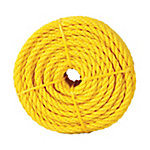 Koch Industries Polypropylene Twisted Rope, Yellow, 1/4 in. x 100 ft. Coil
