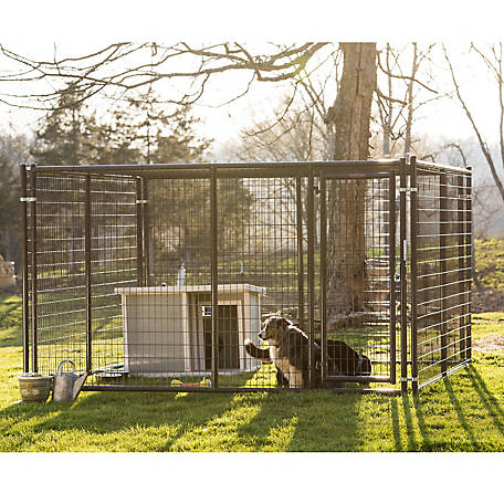 Tarter Farm and Ranch Equipment 6 ft. x 10 ft. x 10 ft. Heavy-Duty Dog Kennel, DKHDG