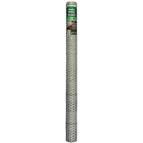 60 in. x 50 ft. Poultry Netting with 1 in. Mesh, 166050