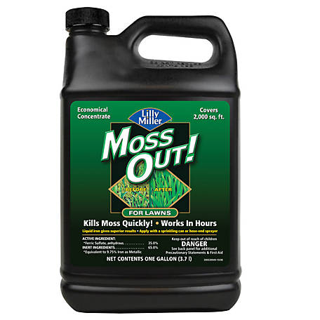 Lilly Miller Moss Out for Lawns, 1 gal., 100099156