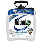 Roundup Weed & Grass Killer III, Pump 'N Go 2, Ready To Use Spray, 1.33 gal.