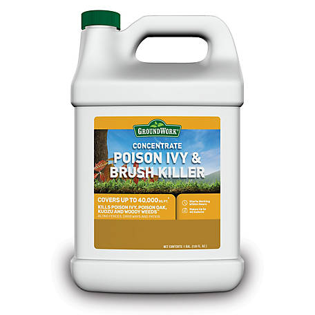 GroundWork Poison Ivy & Brush Killer Concentrate, 1 gal., 8791077