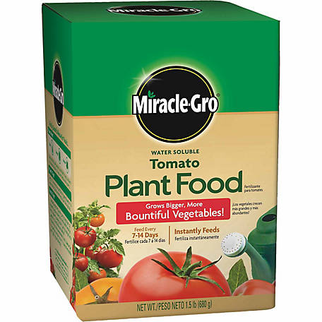 Miracle-Gro Water Soluble Tomato Plant Food 1.5 lb, 2000422