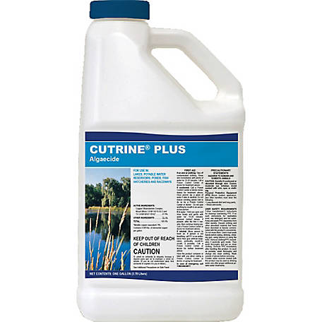 Applied Biochemists Cutrine Plus Algaecide, 390104A