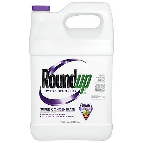 Roundup Weed & Grass Killer Super Concentrate, 1 gal., 5004215