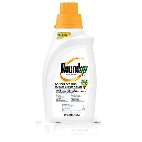 Roundup Poison Ivy Plus Tough Brush Killer Concentrate, 32 oz.