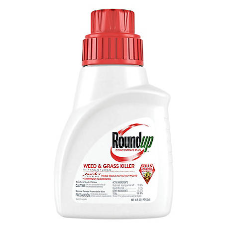 Roundup Weed & Grass Killer Concentrate Plus, 16 oz., 5005510
