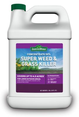 GroundWork Super Weed & Grass Killer Concentrate, 50% Glyphosate, 1 gal., 9501077