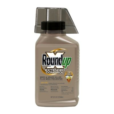 Buy Roundup Extended Control Weed & Grass Killer Concentrate; 32 oz. Online