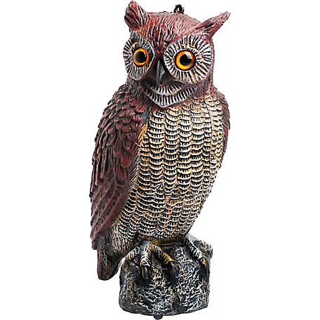 GroundWork Owl Decoy at Tractor Supply Co