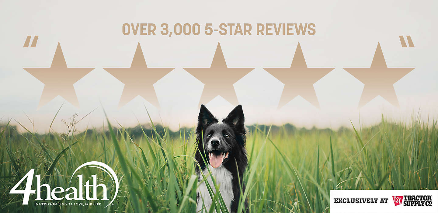 Over 3,000 5-Star reviews