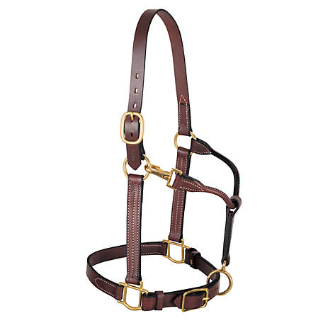 Weaver Leather, Leather 3-in-1 All Purpose Halter, 1 in., Mahogany
