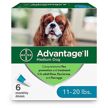 Advantage II for Dogs, 11-20 lb., 4 Month Supply