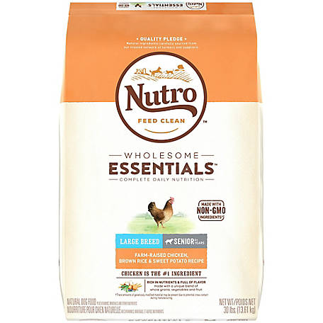 Nutro Wholesome Essentials Senior Dry Dog Food Chicken Large