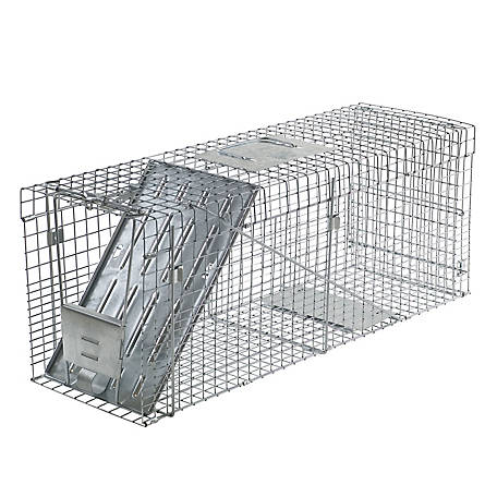 Havahart Collapsible Large 1-Door Animal Trap, 1089