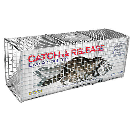 CountyLine Catch and Release Live Animal Trap, 32 in. x 10 in. x 12 in.