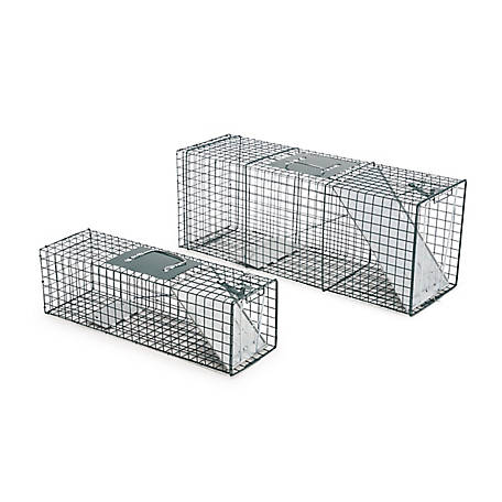 CountyLine Catch & Release Live Animal Trap, 2 Pack