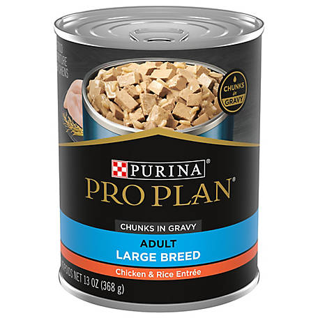 Purina Pro Plan FOCUS Large Breed Chicken & Rice Entree Chunks in Gravy Adult Wet Dog Food, 13 oz. Can