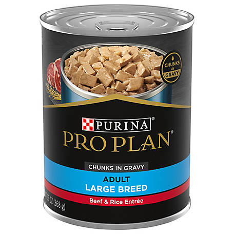 Purina Pro Plan FOCUS Large Breed Beef & Rice Entree Chunks in Gravy Adult Wet Dog Food, 13 oz. Can