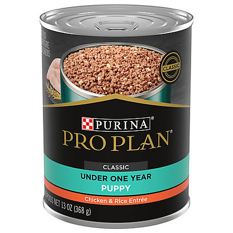 Purina Pro Plan Pate Wet Puppy Food; FOCUS Classic Chicken & Rice Entree, 13 oz. Can