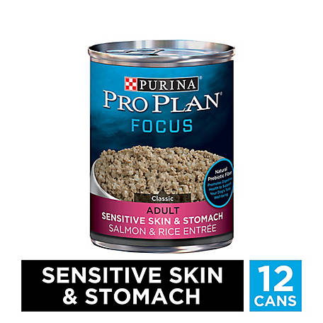 Purina Pro Plan Sensitive Stomach Pate Wet Dog Food; FOCUS Sensitive Skin & Stomach Salmon & Rice, 13 oz. Can