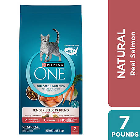 Purina ONE Natural Dry Cat Food, Tender Selects Blend with Real Salmon, 7 lb. Bag