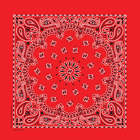 Carolina Creative Products Red Paisley Bandanna