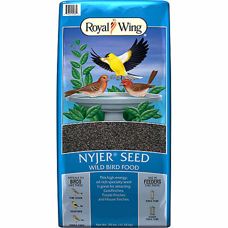Royal Wing Nyjer Seed Wild Bird Feed, 25 lb.