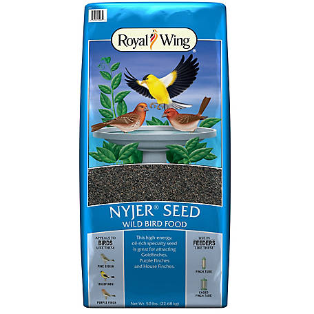 Royal Wing Nyjer Seed Wild Bird Feed, 50 lb.