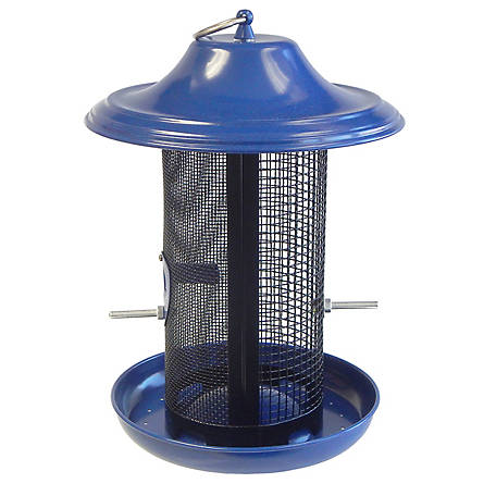 Stokes Select Stokes Select Cobalt Twin Dual-Compartment Screen Feeder, 38198