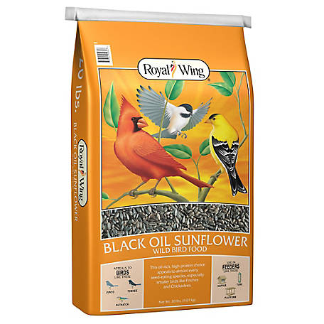Royal Wing Black Oil Sunflower, 20 lb.