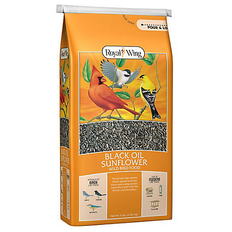 Royal Wing Black Oil Sunflower Wild Bird Food, 6 lb.