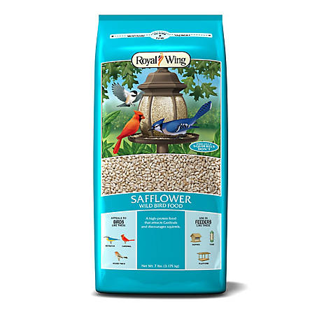 Royal Wing Safflower Wild Bird Food, 7 lb.
