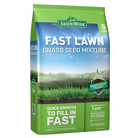 GroundWork Fast Lawn Mixture, 5 lb.
