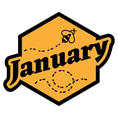 Beekeeping January