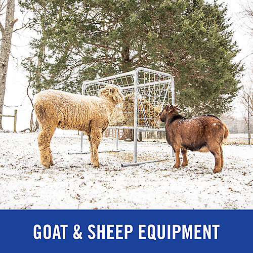 Goat & Sheep Equipment - Tractor Supply Co.
