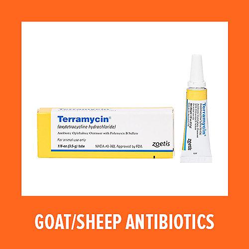Zoetis Goat & Sheep Antibiotics - Tractor Supply Co.